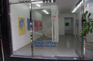 pascal lievre 2009 illusions vue de l exposition 1