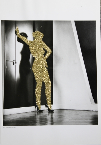 pascal lievre 2014 the golden ladies of helmut newton 05