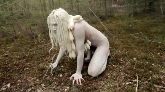 pascal lievre totem und tabu