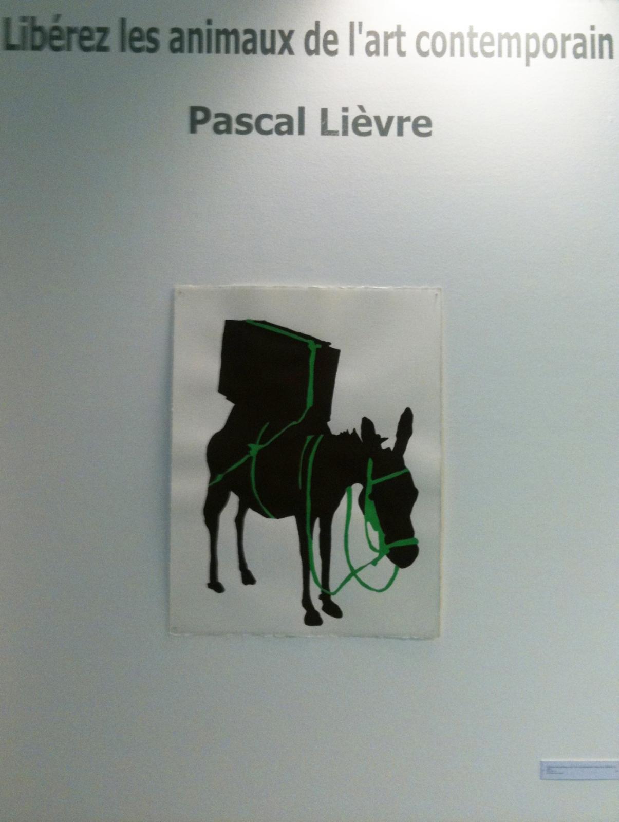 """pascal-lievre-liberez-le""""s-animaux-de-lart-contemporain-annecy-01"""
