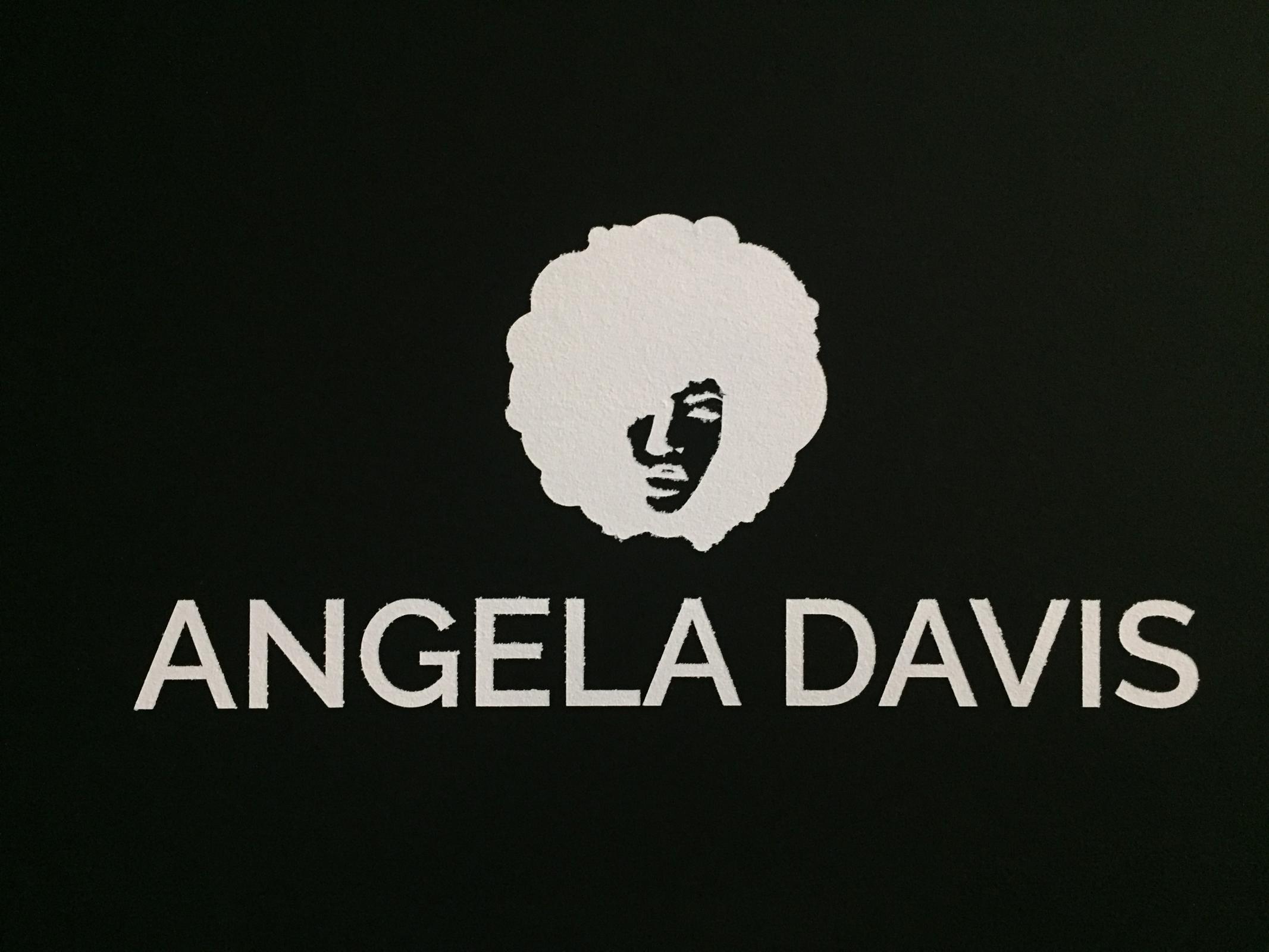 pascal-lievre-nicole-tran-ba-vang-galerie-mouvements-photocall-angela-davis